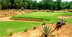 VIET NAM GOLF DREAMS 12D11N